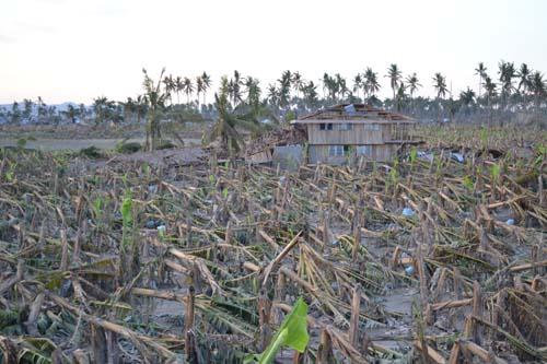 2012-12-12-damagedhomesandcrops.jpg