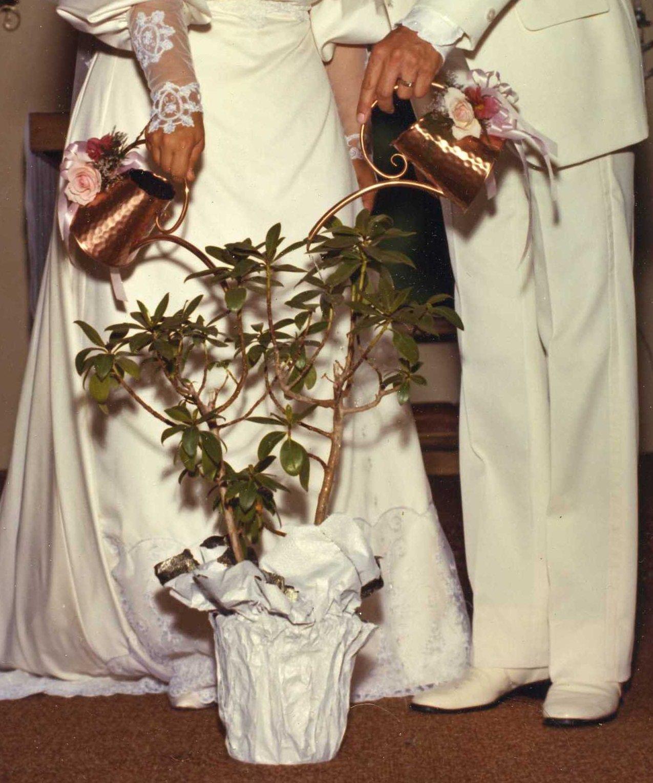 2012-12-13-WeddingTreeClose.jpg
