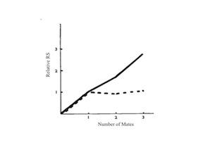 2012-12-14-1.MostcitedBatemangradientSlide1.jpg
