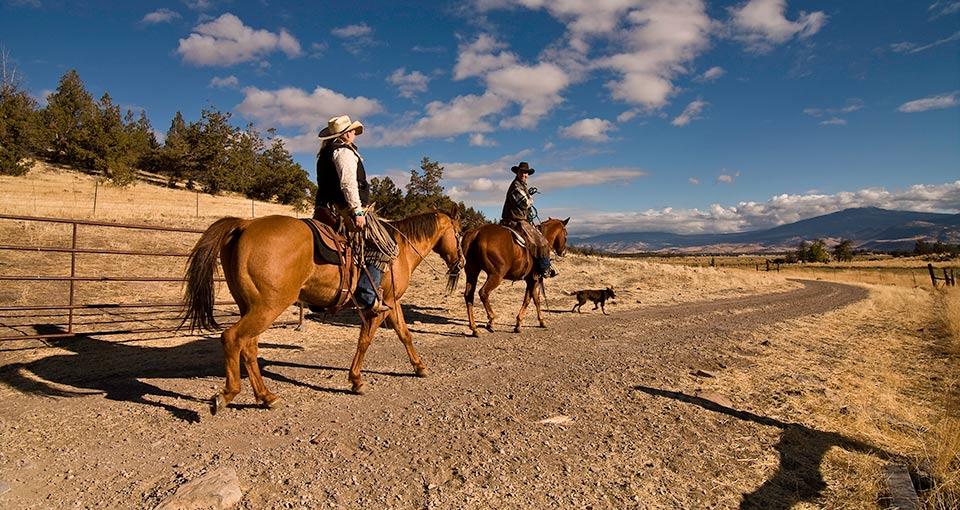 2012-12-18-Stranko_Ranchers.jpg