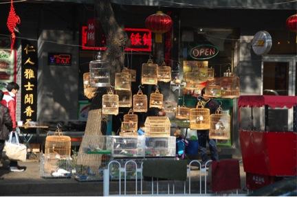 2012-12-18-birdcages.jpg