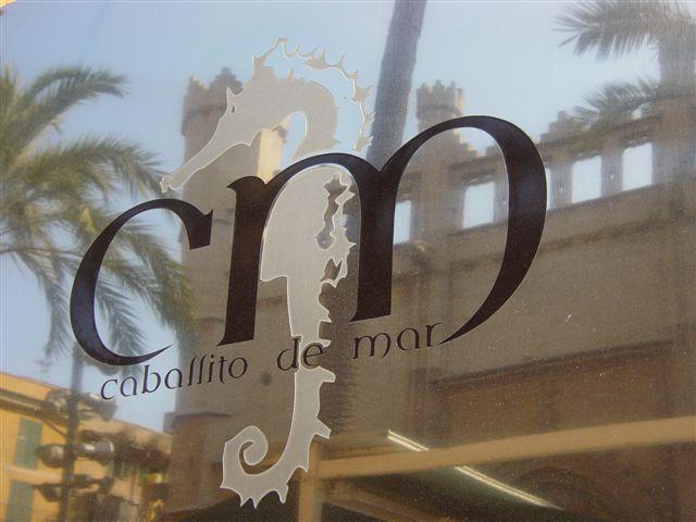 2012-12-18-fotoscaballitodemar010.jpg