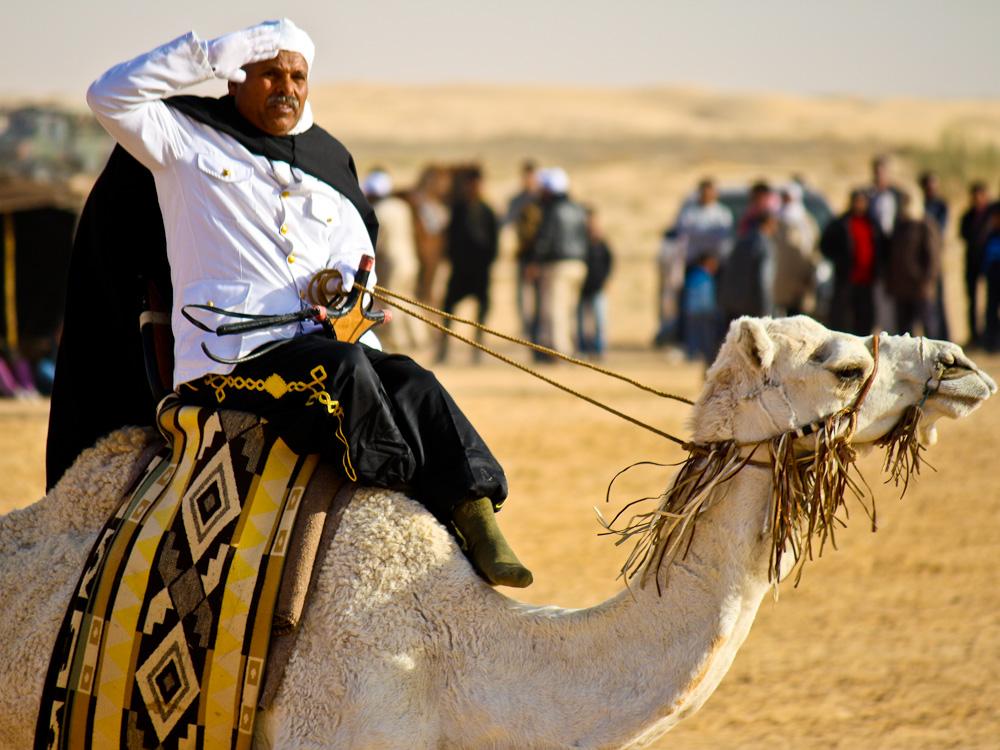 2013-01-02-CamelSalute.jpg