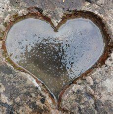 2013-01-02-heart1.jpg