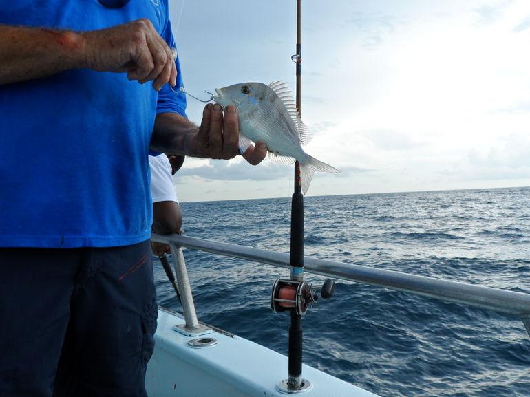 2013-01-03-Miamifishingcruise.jpg