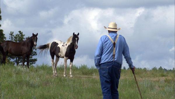 2013-01-07-kmc1213-daytonhorse-RunningWildDaytonOHyde600.jpg