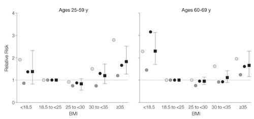 2013-01-08-BMI1.png