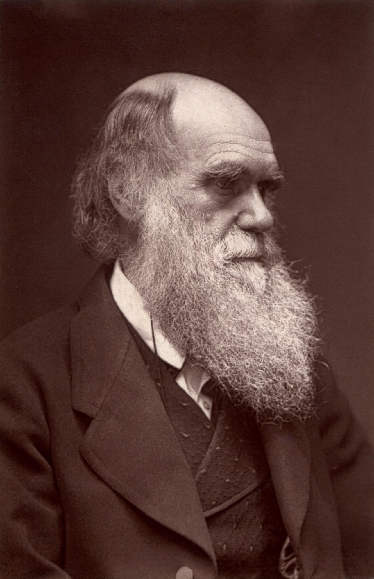 2013-01-09-Darwin__John_G_Murdoch_Portrait_restored_1871_wikimediacommons.jpg