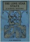 2013-01-09-thelonestarstate.jpg