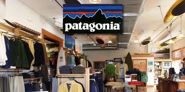 2013-01-14-Patagoniapanel1.jpg