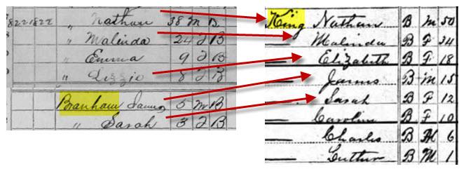 2013-01-17-MLK18701880censussmolenyak.jpg