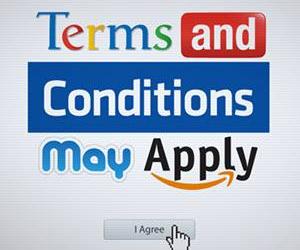 2013-01-25-termconditions250.jpg