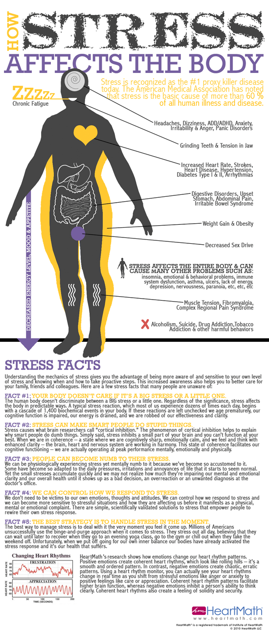 2013-01-29-stressinfographic.png