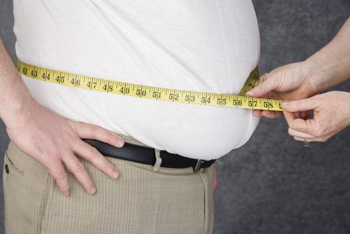 2013-01-30-obese.jpg