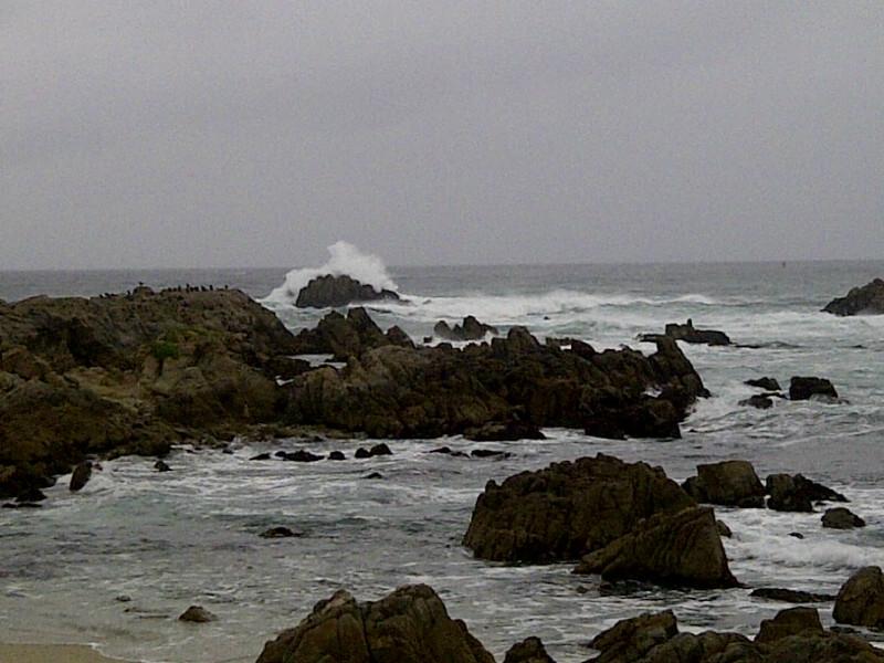 2013-01-31-MontereyOcean.JPG