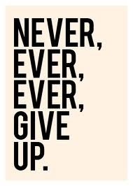 2013-02-06-NeverGiveUp.jpg