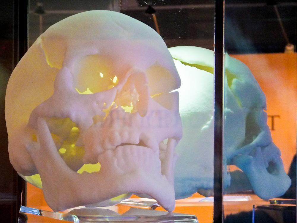 2013-02-08-ReplicaSkull.jpg