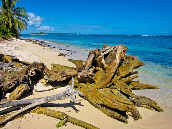 2013-02-11-Beach.jpg