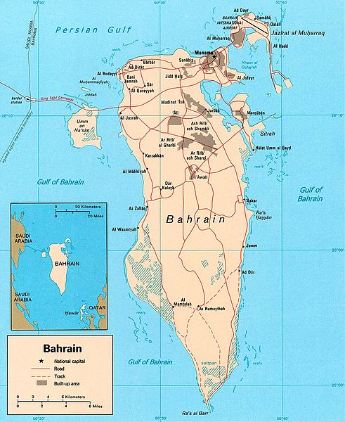 2013-02-13-491pxBahrain_pol_2003.jpg