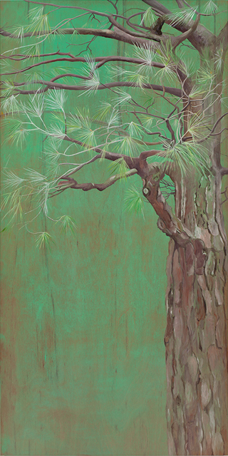 2013-02-14-Imperial_Pine_2012_oil_on_wood_panel_66x33_inches.jpg