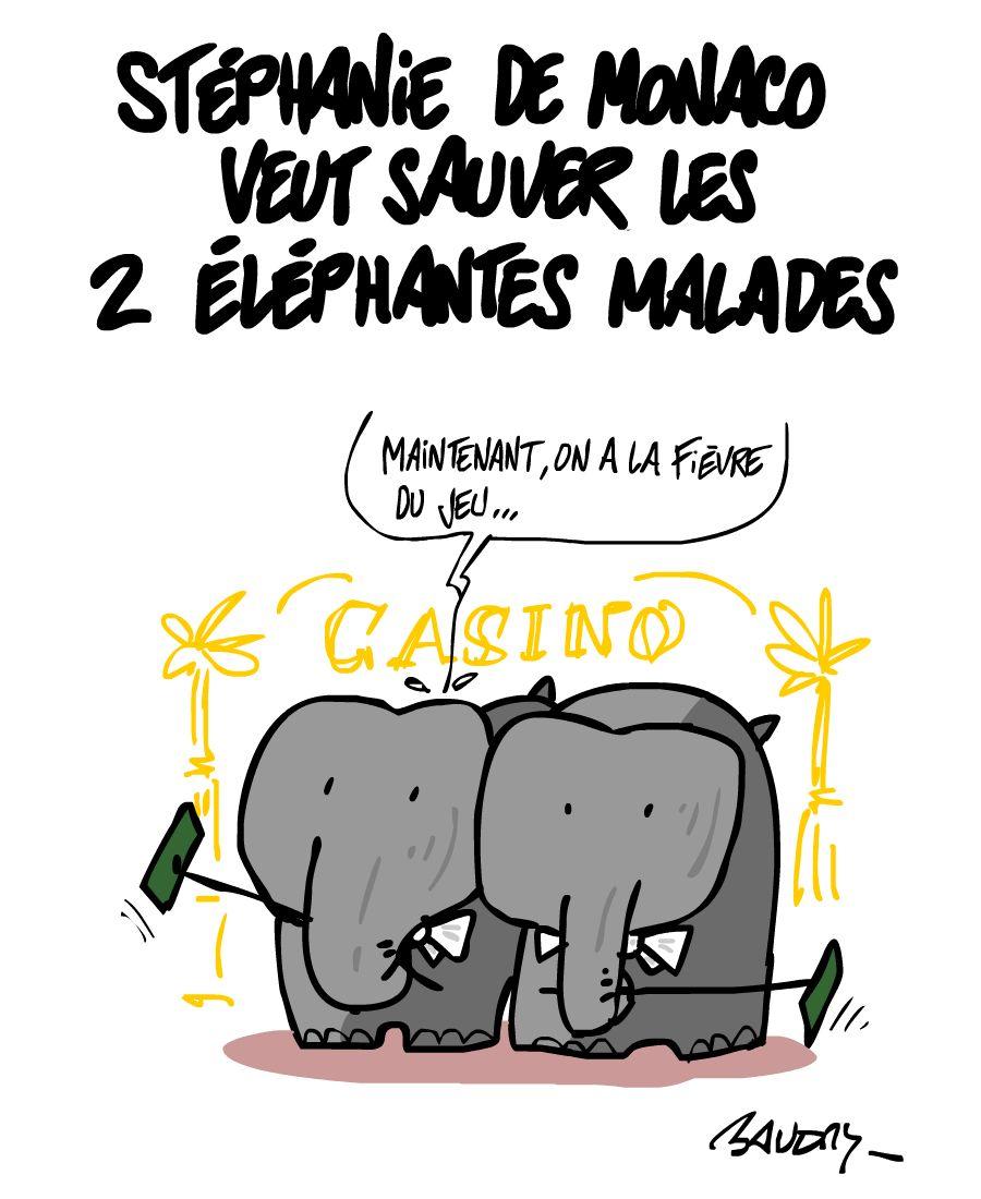 2013-02-20-elephants.jpg