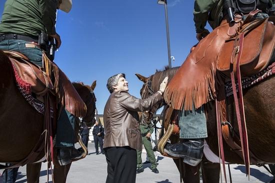 2013-02-21-horses.jpg