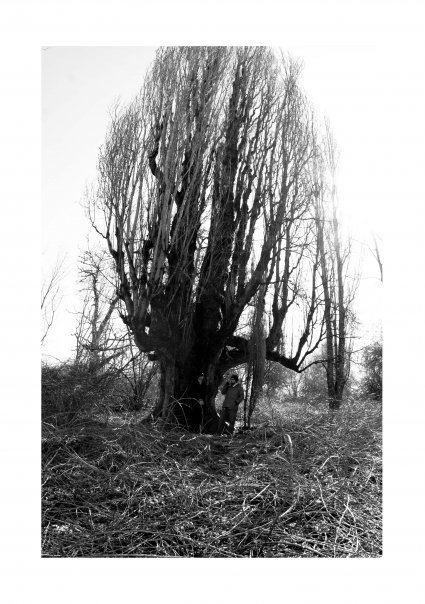 2013-02-26-PhotoofLoganLynnbyCareyHaider3.jpg