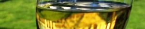 2013-03-07-800pxChardonnayUVa2.jpg