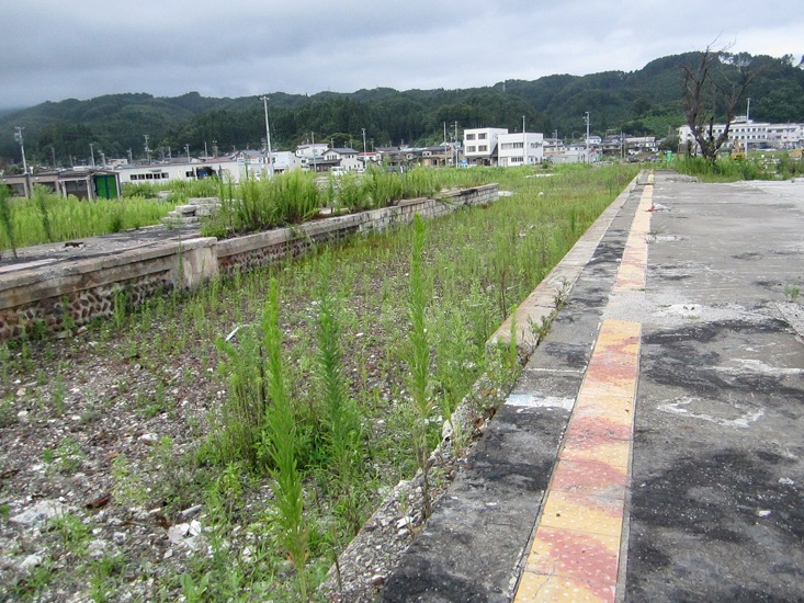 2013-03-08-IMG_4478.JPG