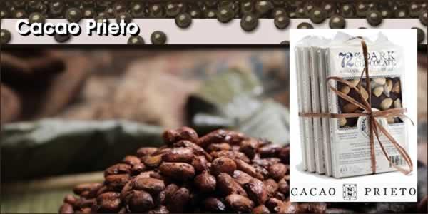 2013-03-14-CacaoPrietoPanel1.jpg