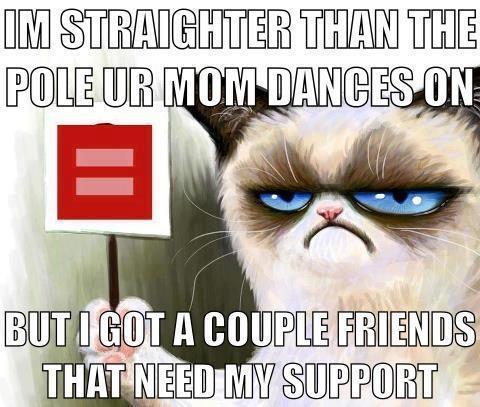 2013-03-29-homophobicsupport.jpg