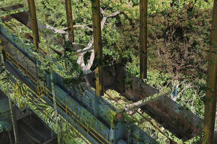 2013-04-01-kisalala-treeless-glCorporate5RoseKlabinCorporateIdentity.jpg