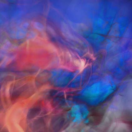 2013-04-13-burnes_transluminant001.JPG