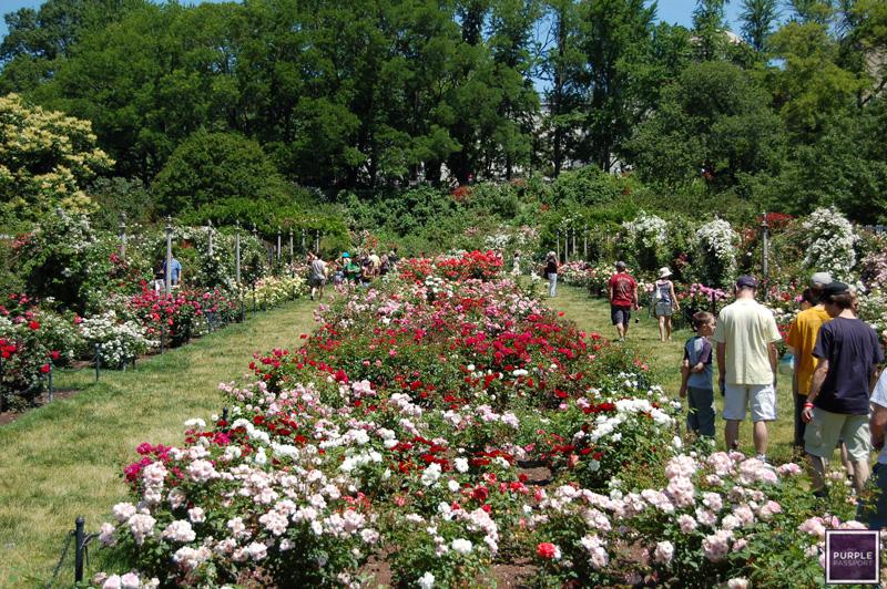 City Nature Breaks For Celebrating Earth Day Huffpost