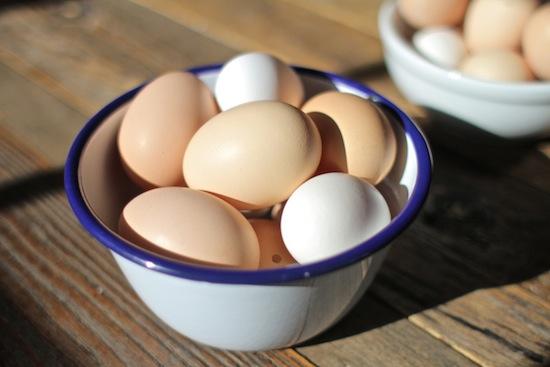 2013-04-24-EggGlam.jpg
