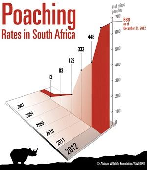 2013-04-24-Poaching_headline_Jan_2013AfricanWildlifeFdn_Resize.jpg