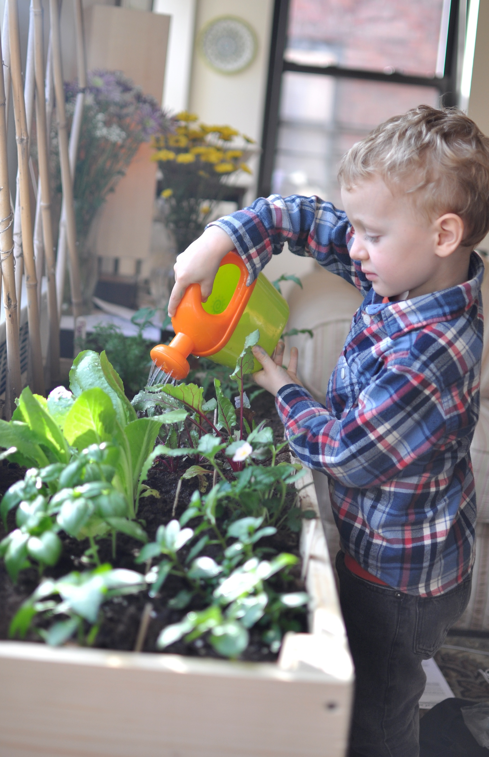 2013 04 27 feindoorgardenjpg - Vegetable Garden Ideas For Kids