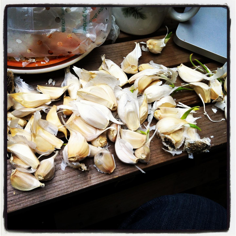 2013-04-30-garlic.JPG