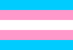 2013-05-01-TransgenderPrideFlag_300pxls.jpg