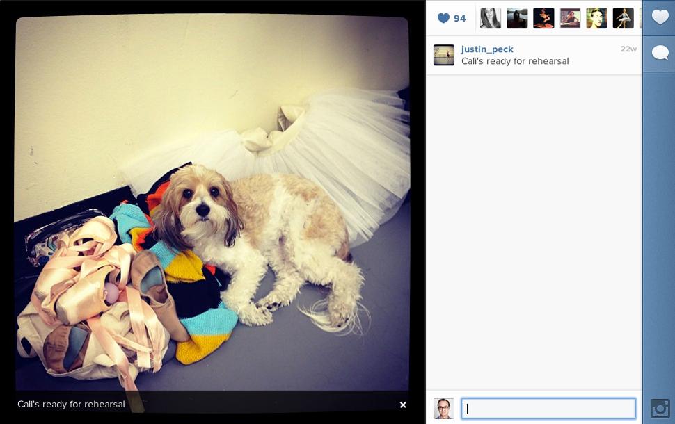 2013-05-06-instagramJustinPeckdogs.jpg