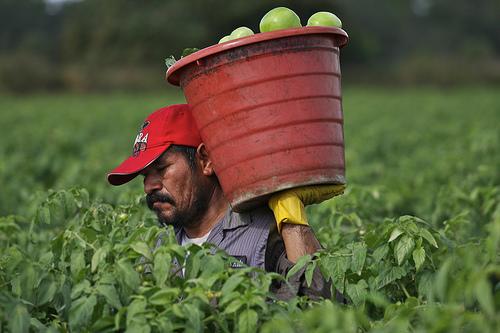 2013-05-08-farmworkerholdingbucketwithonehand.jpg