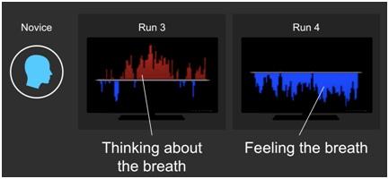2013-05-09-runs.jpg