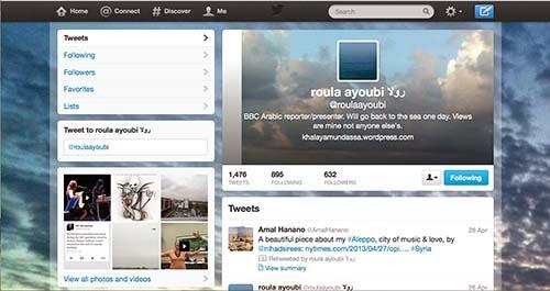 2013-05-10-ScreenshotofRoulaAyoubisTwitterpage.jpg
