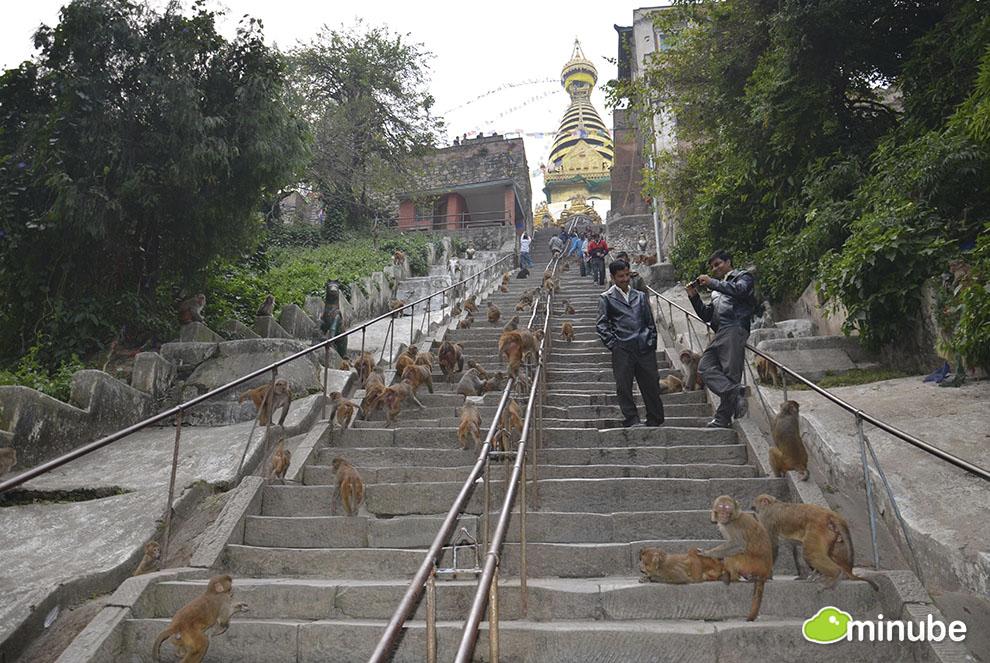 2013-05-13-Swayambhunath.jpg