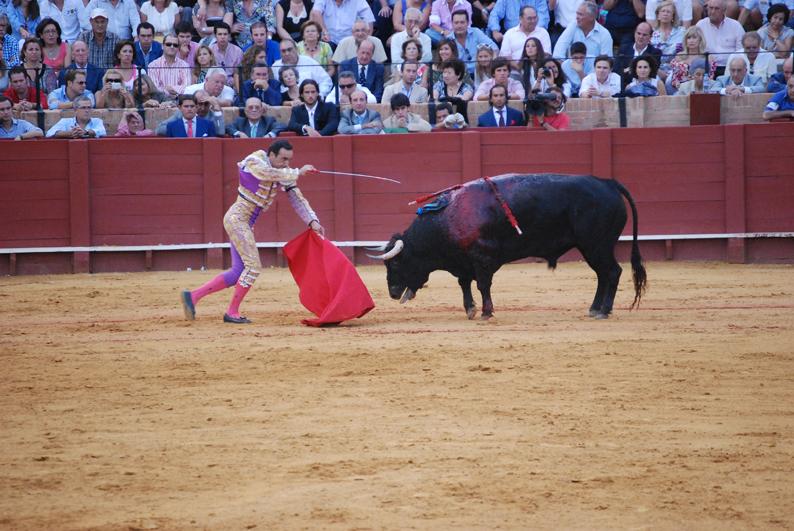 2013-05-14-bullfighting_matadorpoised_spain_HSI.jpg