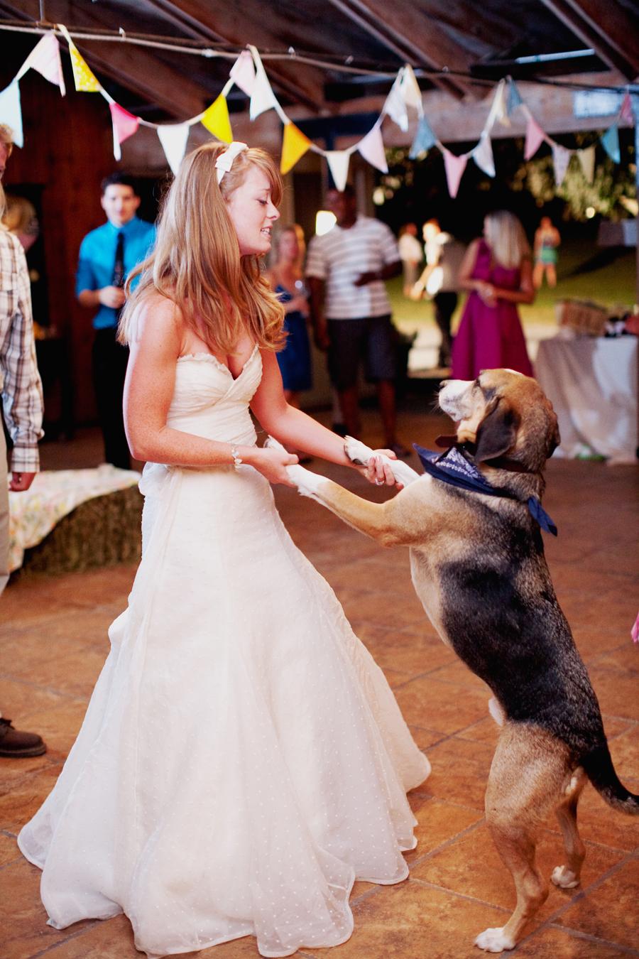 2013-05-20-jodimillerphotographywedding_dogs_11.JPG