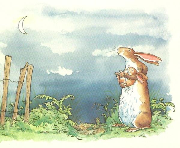 2013-05-21-bunny.jpg