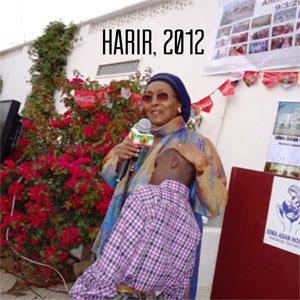 2013-05-28-Harir2012text.jpg