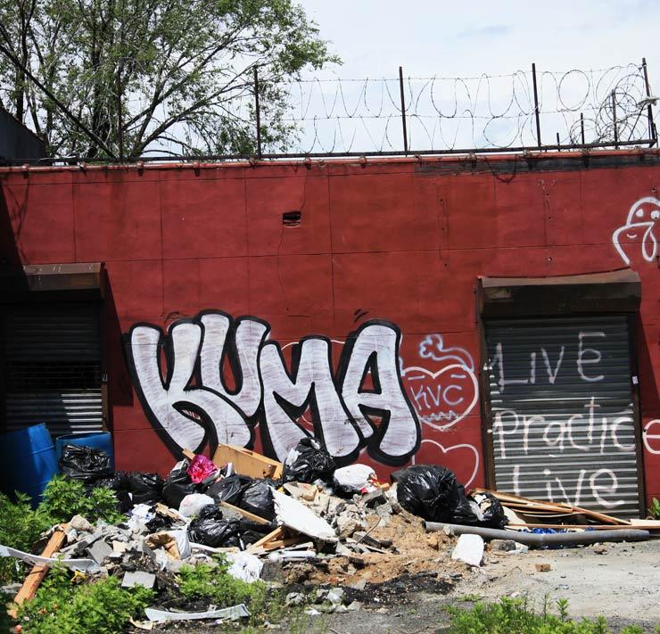 2013-05-29-brooklynstreetartkumajaimerojo0513web.jpg