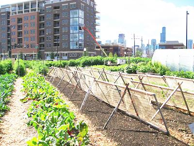 2013-06-03-urbanfarm.jpg